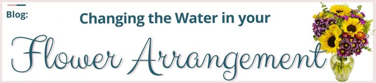Changing the Water in Your Water Arrangement