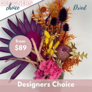 designers choice home page (6)