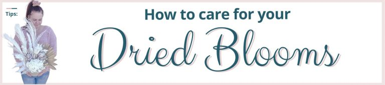 How to Care for your Dried Blooms